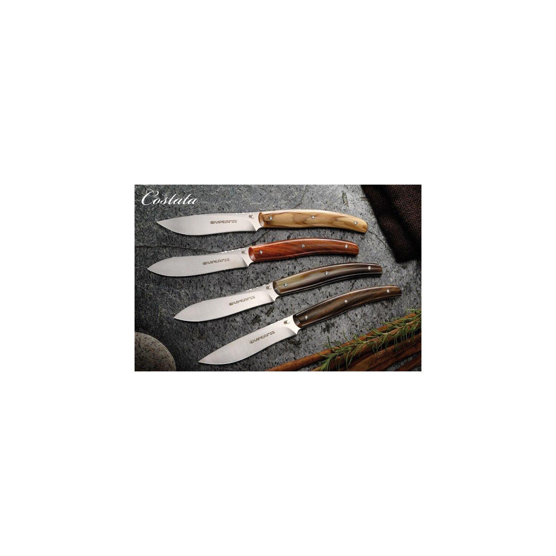 2 steakmesser olivenholz viper costata italien 440a slow food messer vt7502 02ul 71 25. Black Bedroom Furniture Sets. Home Design Ideas
